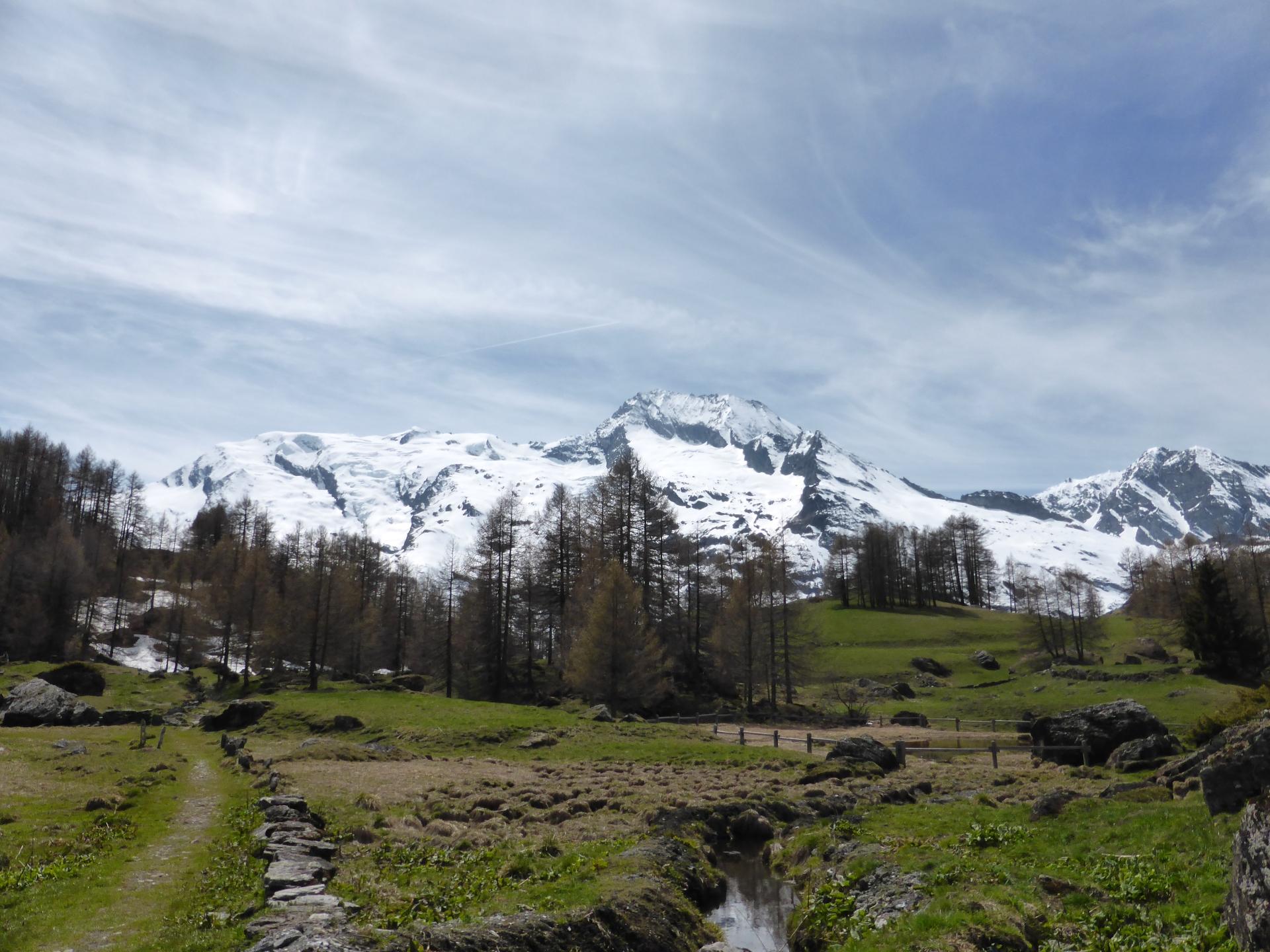 View over the glaciers du Mont Pourri from Le Monal