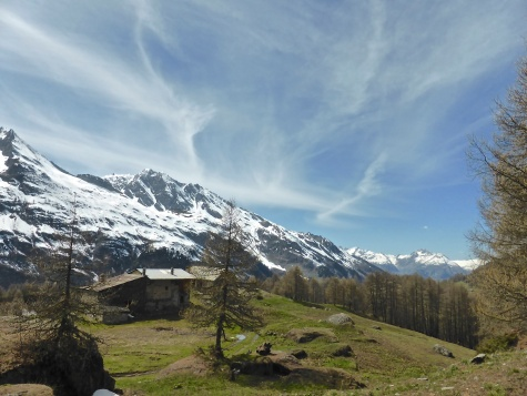 Le Legettaz, the other side of the larch forest