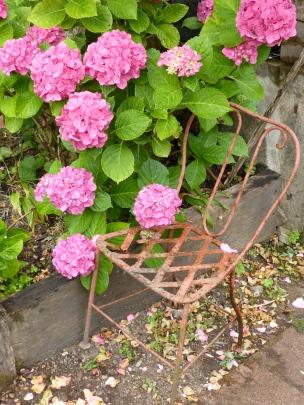 Tupinier: the garden