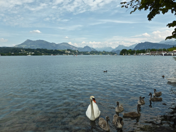 Lucerne: walk on the lakeside