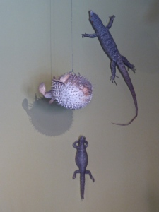 Schloss Ambras, arts and curiosities chamber: fish and lizards (reconstitution)