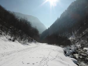 Vallée des chapieux