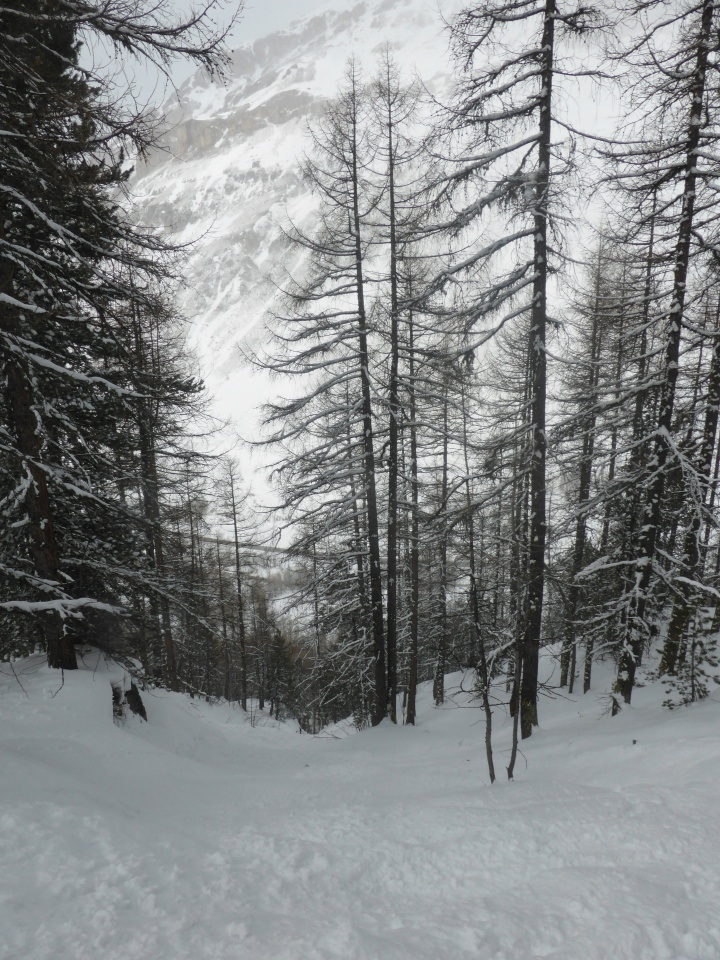 Laisinant forest: head for a short couloir