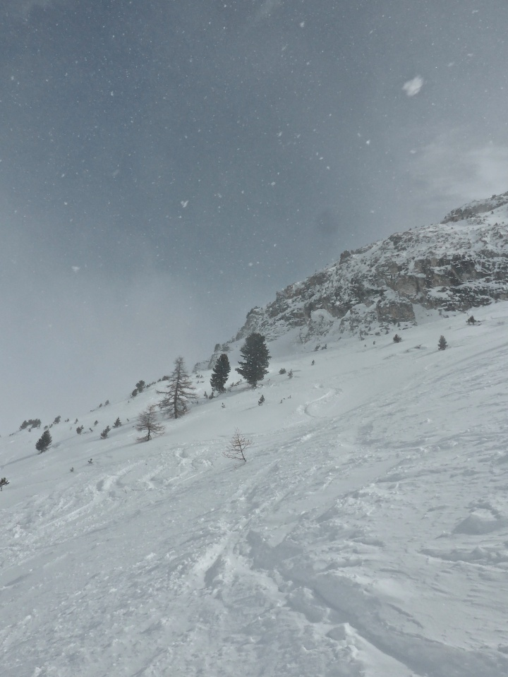 Laisinant: above the tree line