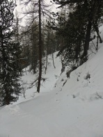 Laisinant forest: sliding in a cut through the cliffs