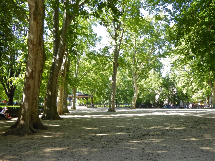 Ambling in the shade of the tall plane trees in the Jardin de ville