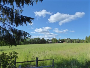 Mellerud: the little house in the Swedish prairie