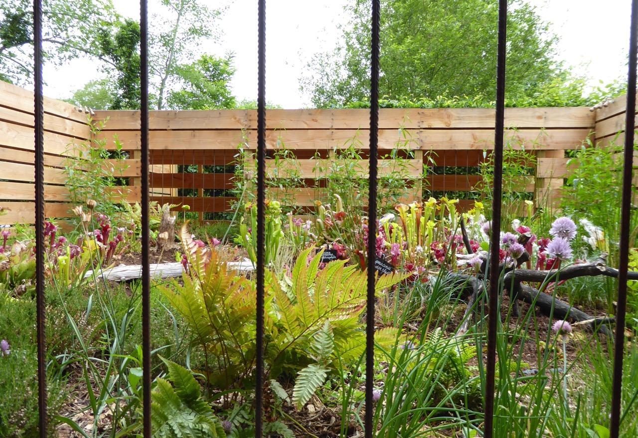 Carnivore Parc: dangerous plants behind bars