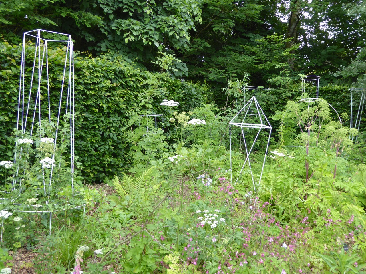 The Lost Garden: unattended topiary frames colonised by wild plants