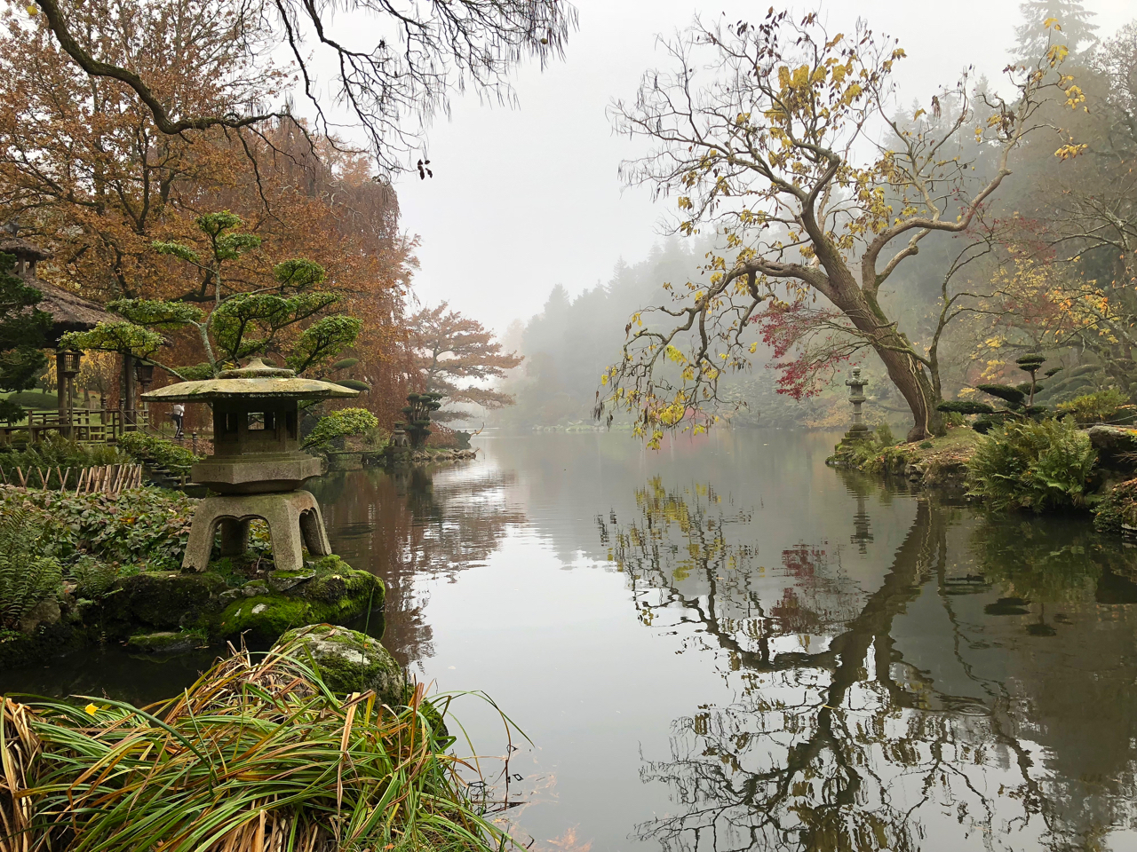 View over the lake in Maulevrier's Japanese gardens