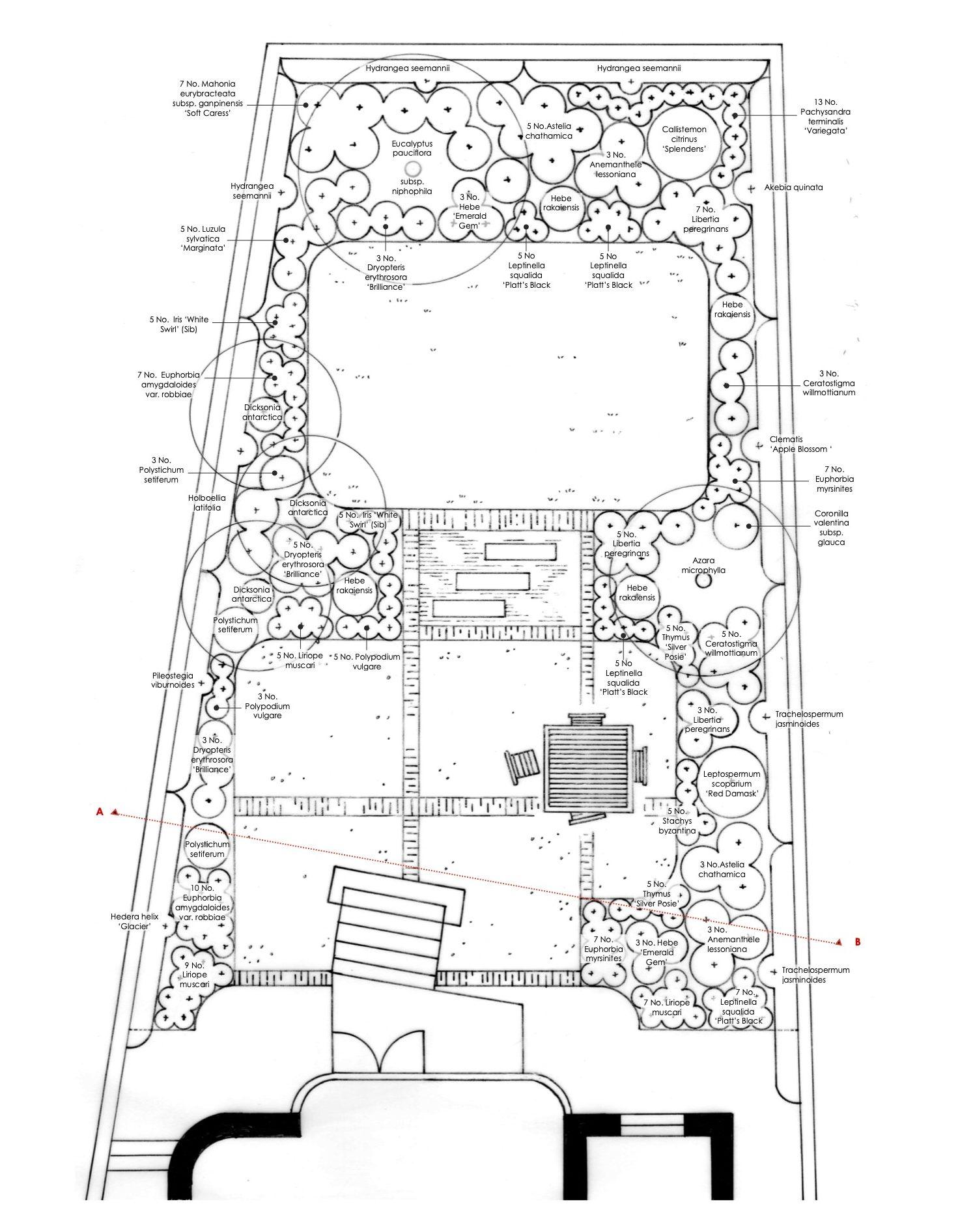 New Zealand garden, planting plan